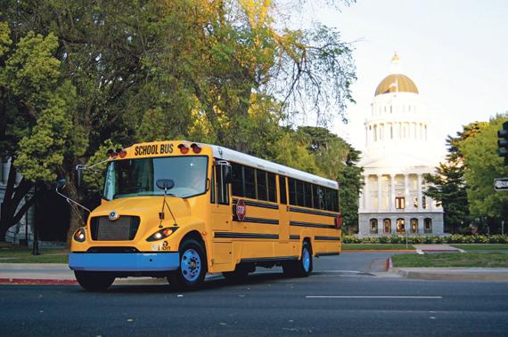 Autobus Lion